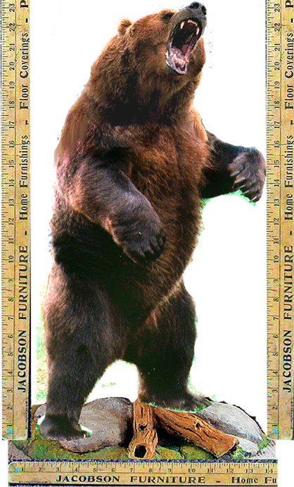Grizzlie combined copy