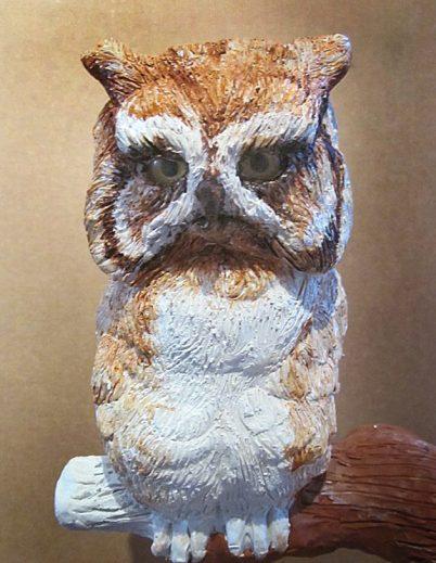 SCREECH OWL 7 21 16