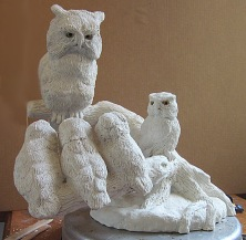 Screech Owls 7 11 2