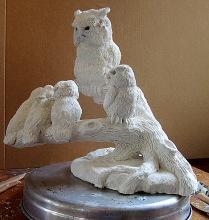 Screech Owls 7 11 3