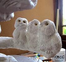 Screech Owls 7 11 6