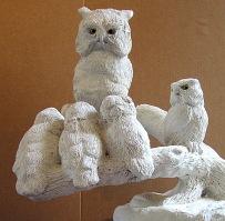 Screech Owls 7 11 8