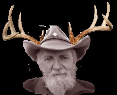 deer-antlers-sob